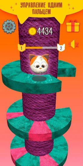 Helix Cat