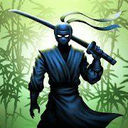 Воин ниндзя: легенда теневых файтингов